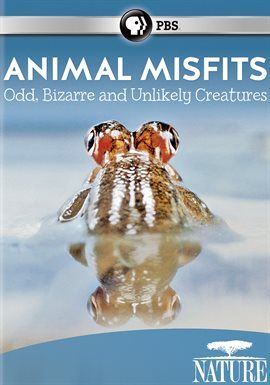 Animal Misfits Opens in new window